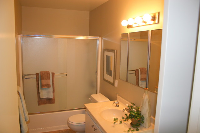 525 Winterberry traditional-bathroom