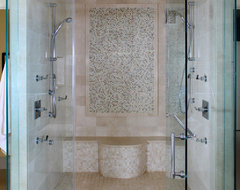Master Shower contemporary bathroom