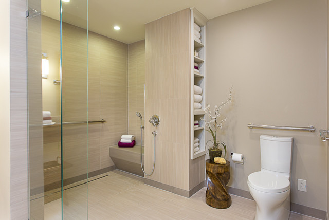 Awesome Accessible, Barrier Free, Aging In Place, Universal Design Bathroom Remodel  Modern