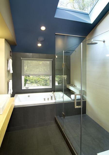 Arlington Residence contemporary-bathroom