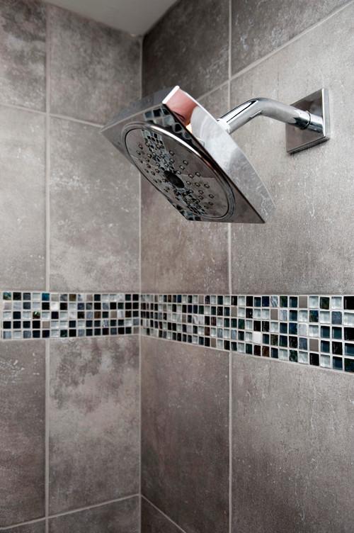 Ashburn Contemporary Basement - Bathroom Shower Head