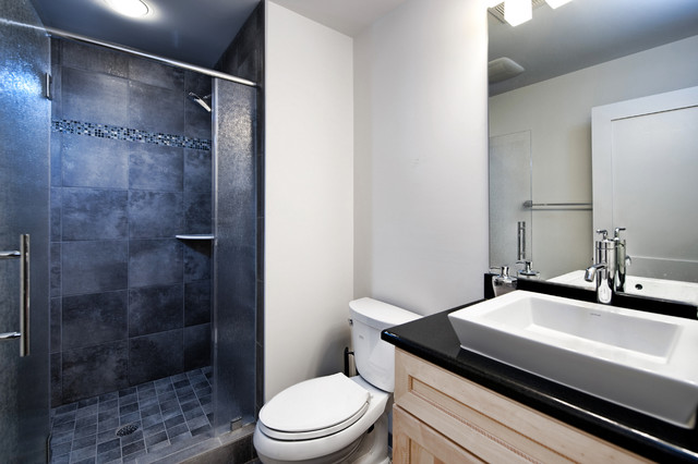 Ashburn contemporary basement bathroom contemporary for Bathroom designs basement