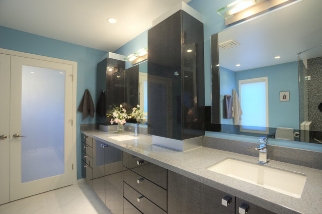 Award Winning Bathroom Contemporary Bathroom Milwaukee By Lori Jolin Design Llc