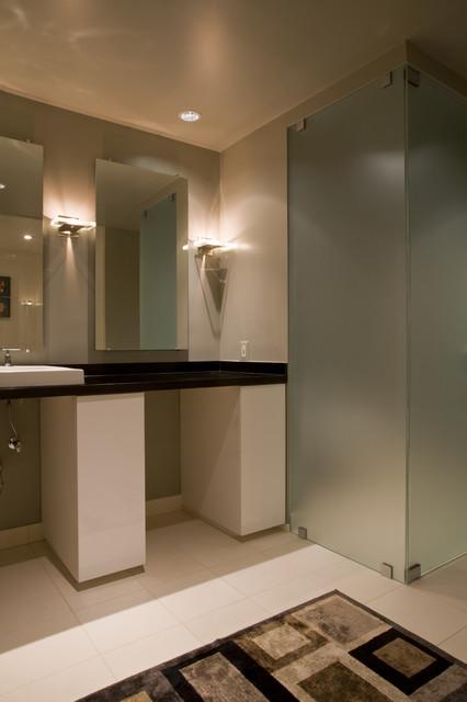 Basement Bathroom contemporary-bathroom