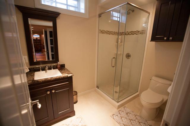 basement bathroom with full shower traditional-bathroom