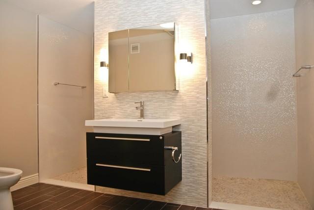 Basement  Living Space contemporary-bathroom