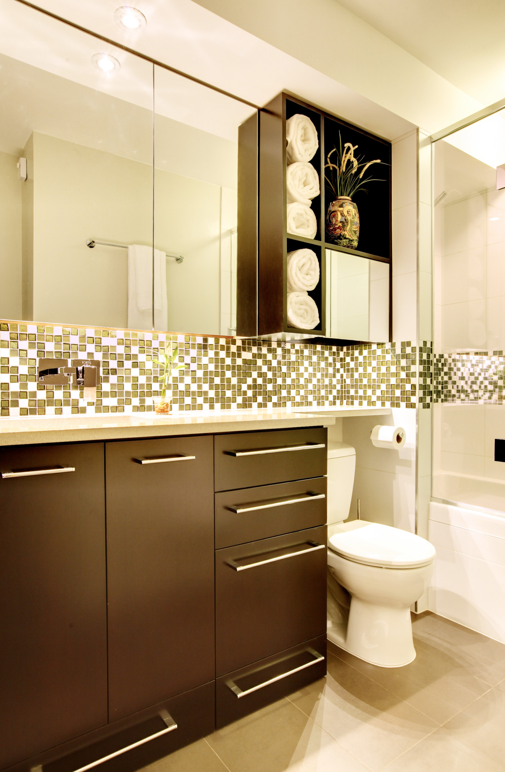Picture of: Cabinet Above Toilet Houzz