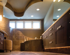 Bathroom Evolution contemporary-bathroom