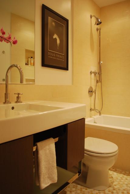 Chicago Townhome modern-bathroom