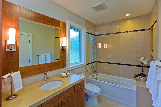 bathroom shower over tub, swinging frameless door, niche contemporary-bathroom