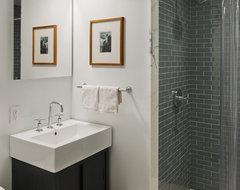 Bergen Street Residence contemporary-bathroom
