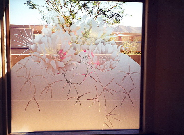 Frosted Bathroom Windows