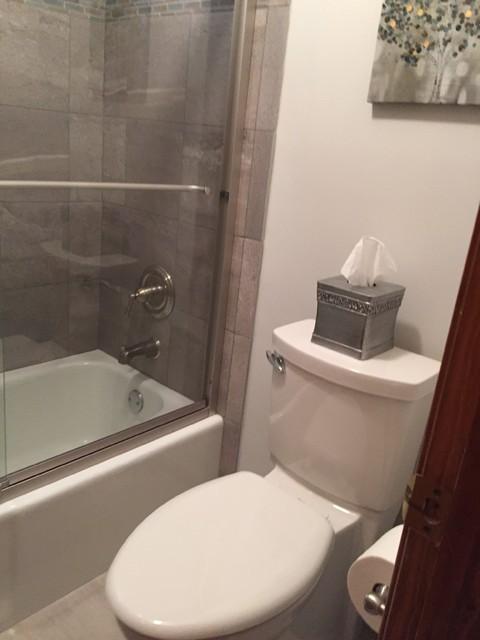 Blue Gray Inspired Hall Bath Transitional Bathroom