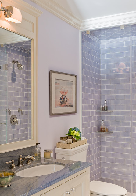 Brooklyn Heights Addition Traditional Bathroom New York By Ben Herzog