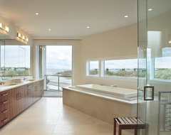 Bruce D. Nagel Architect modern bathroom