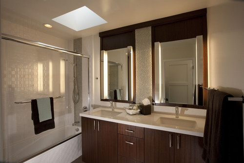 where can I find the vertical vanity lights?