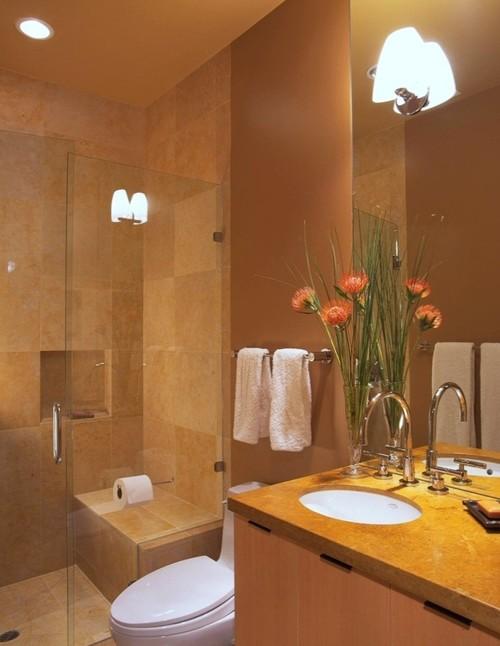 Attached toilet bathroom designs