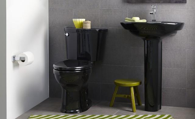 Champion Pro Contemporary Bathroom New York By