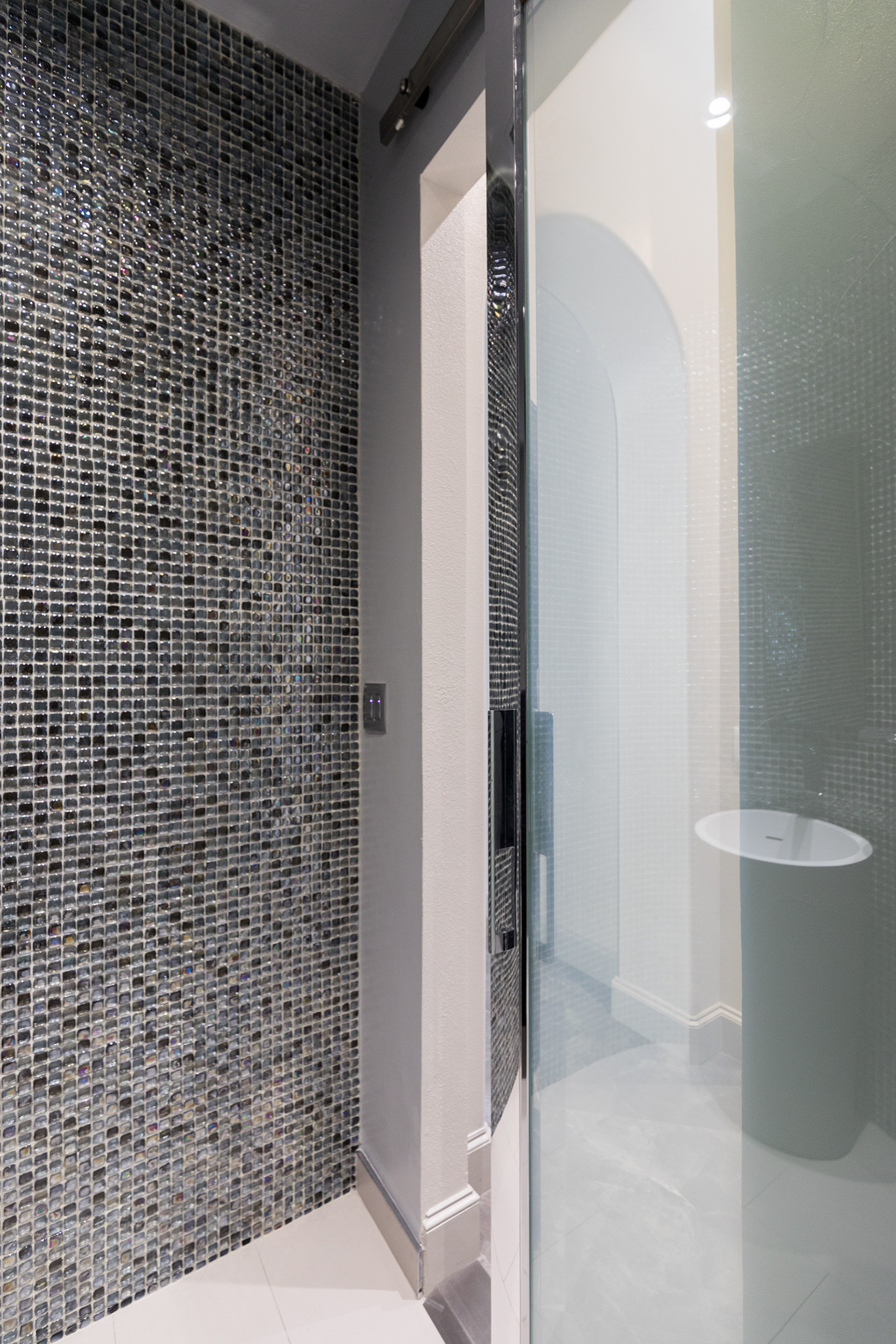 Contemporary Bath with Varying Opacity Door