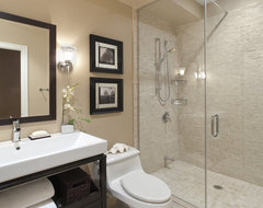 Port Credit Townhome transitional-bathroom