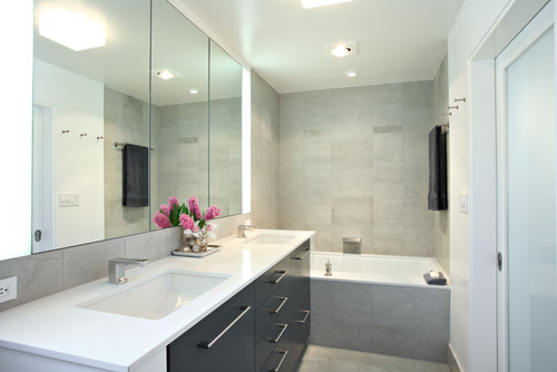 Are the vertical light fixtures by mirror cabinet from Tech lighting?