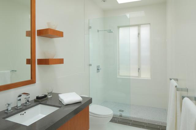 Cosmetic updates on 1980s home modern-bathroom