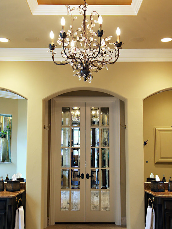 Mirrored French Doors Home Design Ideas Pictures Remodel