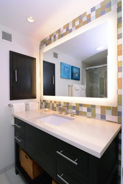 DC Condo Bathroom contemporary-bathroom