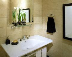 Debra Toney Baths contemporary-bathroom