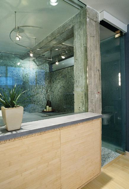 Derwin Residence modern-bathroom