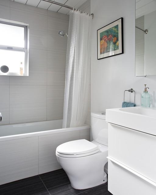 Double Gable Eichler Remodel midcentury-bathroom