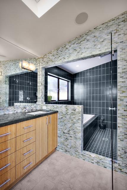 Dyna Bathrooms contemporary-bathroom