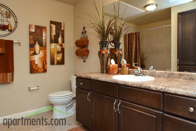 Evans Ranch San Antonio Texas Traditional Bathroom