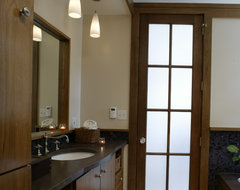 family cottage addition contemporary bathroom