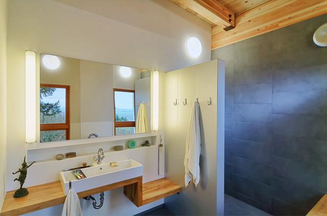 Fern Ridge Lake House contemporary-bathroom