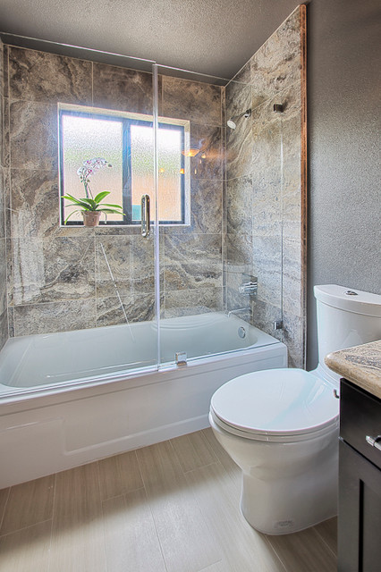 Frameless glass door and panel over a bathtub frameless glass door and panel over a bathtub contemporary bathroom planetlyrics Choice Image