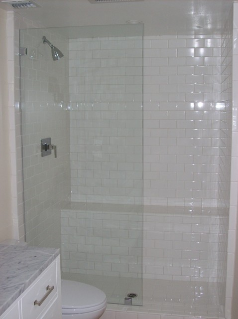 Frameless glass panel shower door traditional-bathroom