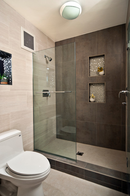 Frameless Shower modern-bathroom
