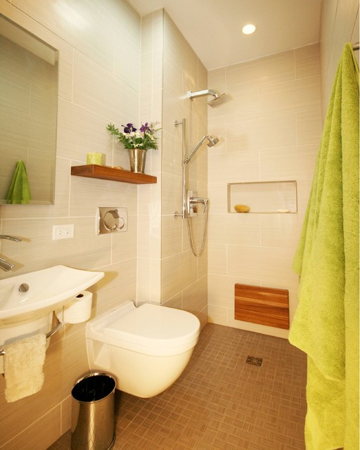From Closet to Wet Bath modern-bathroom