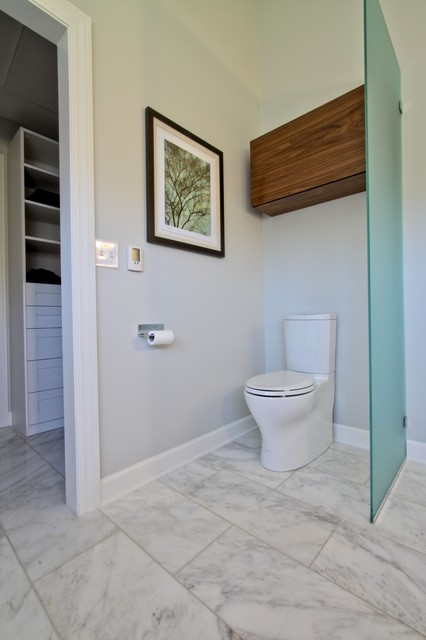 glass partition toilet area with walnut storage cabinet