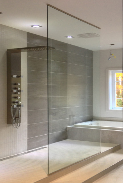 glass showers doorless contemporary bathroom other