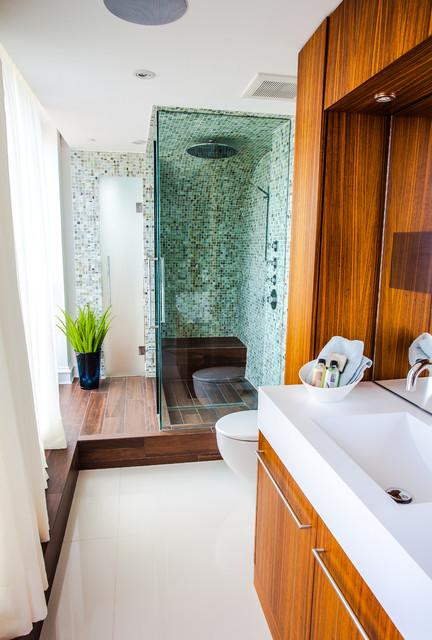 Grace Penthouse contemporary-bathroom