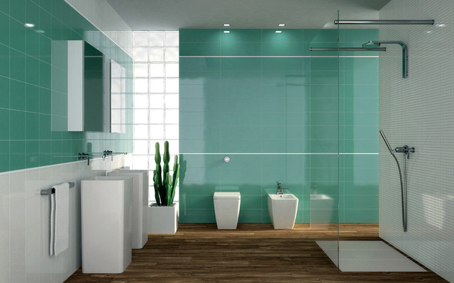 green and white ray.jpg contemporary-bathroom