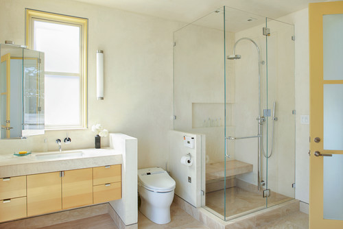 Your Short Nib Wall Between Toilet And Shower Is A Silly