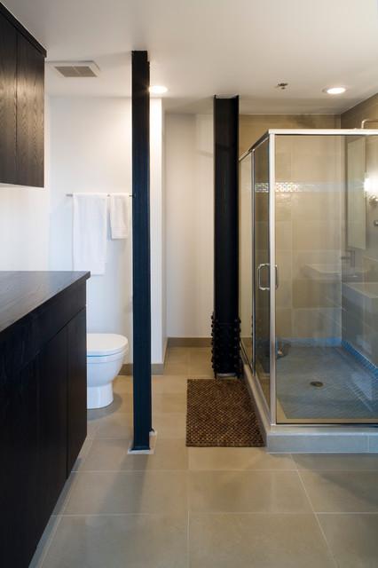 Grinnell Loft contemporary-bathroom