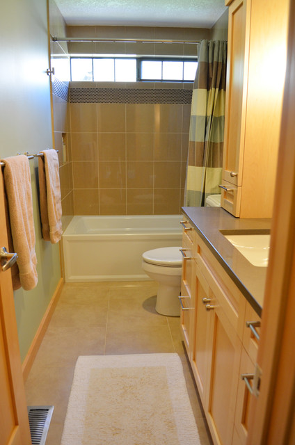 Guest Bath - Overall view... traditional-bathroom