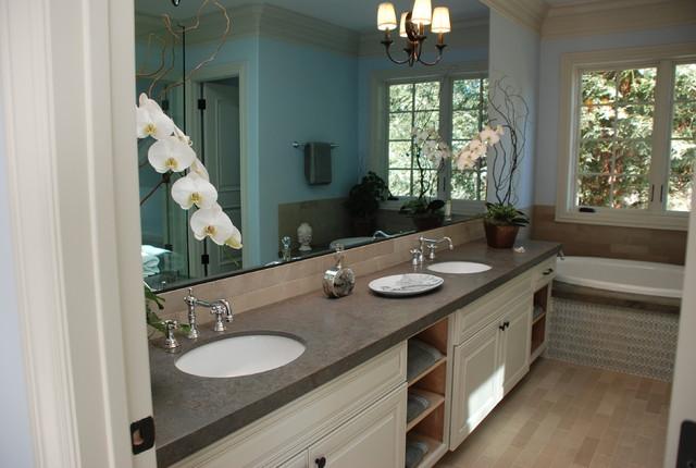 Hamilton traditional-bathroom