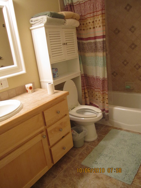 Hanson Remodel traditional-bathroom