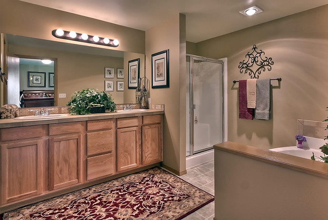 Home Pictures traditional-bathroom