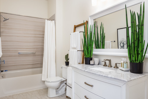 Give Your Guest Bathroom A Glam Makeover With These 5 Design Tricks Realtor Com